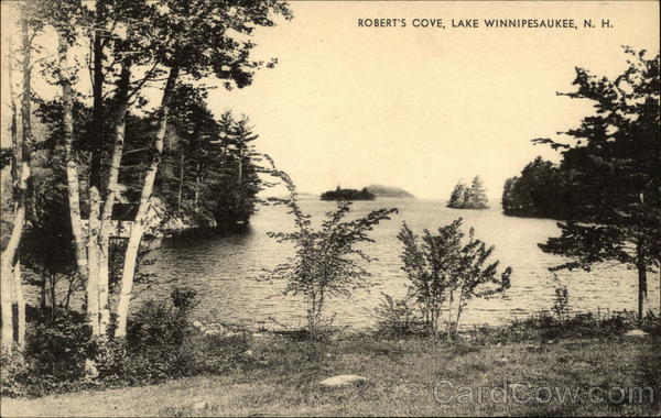 Robert's Cove Lake Winnipesaukee New Hampshire