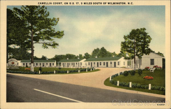 Camellia Court Wilmington North Carolina