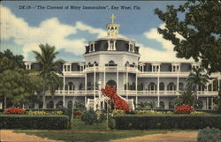 """The Convent of Mary Immaculate"""