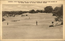 General View Showing Part of Acreage Covered by Sand Postcard