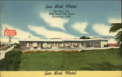 Sea Bird Motel