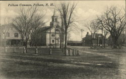Pelham Common