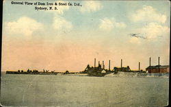 General View of Dom Iron & Steel Co. Ltd.