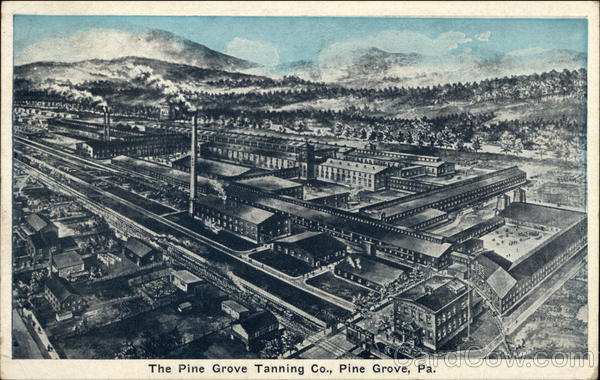 The Pine Grove Tanning Co. Pennsylvania