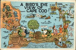 A Bird's Eye View of Cape Cod
