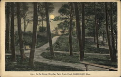 In the Grove, Kingsley Park, Fresh Pond Postcard