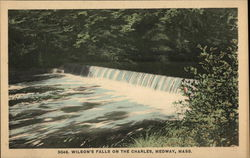 Wilson's Falls on the Charles