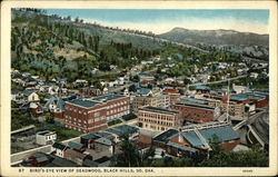 Bird's Eye View of Deadwood
