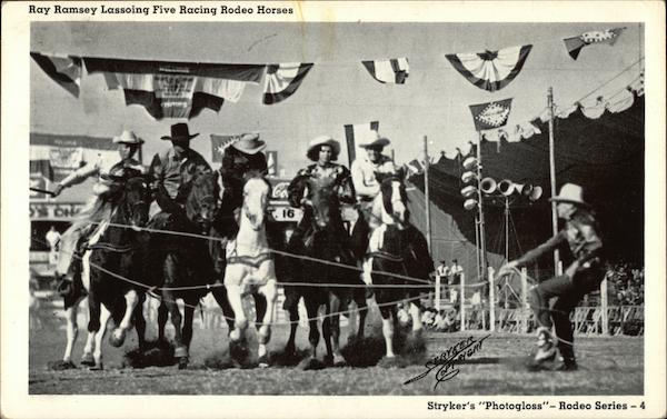 Ray Ramsey Lassoing Five Racing Rodeo Horses Stryker