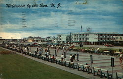 Shuffleboard Courts and Rio Motel