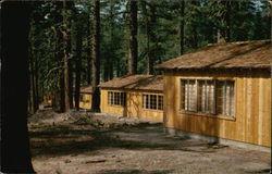 Pine Cottages