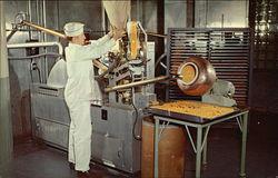 Lederle Laboratories, American Cyanamid Co.