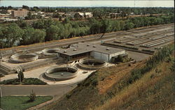 Feather River Fish Hatchery Oroville, CA Postcard
