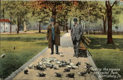 Feeding the Pigeons in Capitol Park