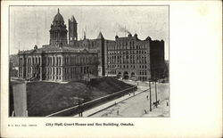 City Hall, Court House and Bee Building