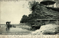 On the Beach, Seven Mile Creek, lake Erie