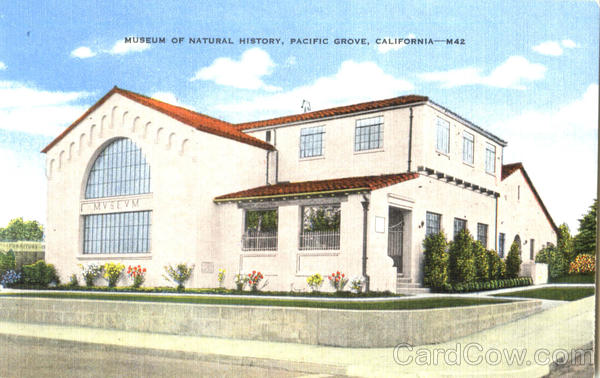 Museum Of Natural History Pacific Grove California