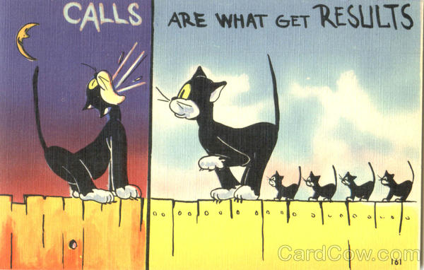 Calls Are What Get Results Cats
