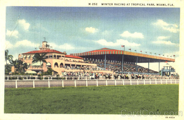 Winter Racing At Tropical Park Miami Florida