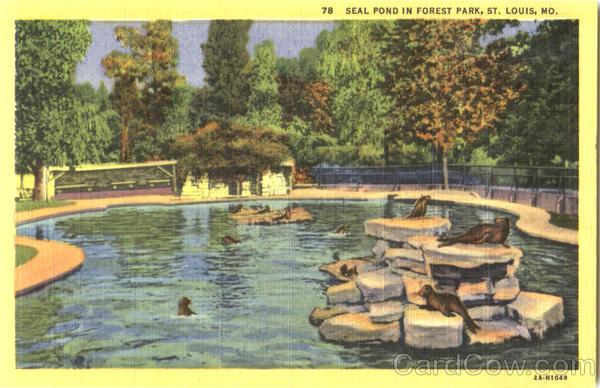 Seal Pond In Forest Park St. Louis Missouri