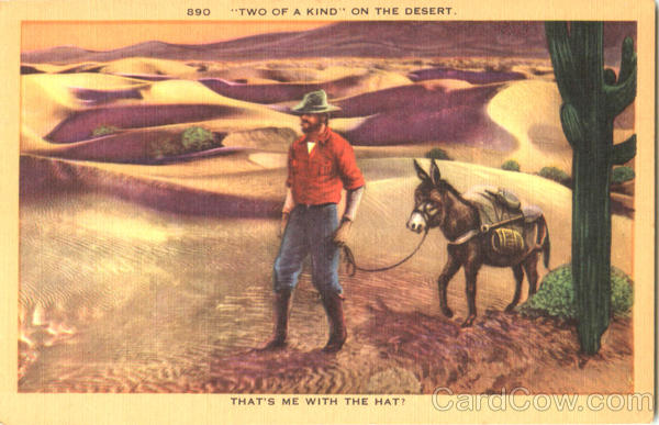 Two Of A Kind On The Desert Cowboy Western