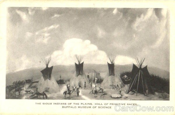 The Sioux Indians Of The Plains Native Americana