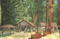 Big Basin Lodge