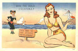 Why, The Bold Creature! Bikini