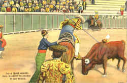 A Tense Moment - Bullfight Postcard
