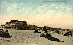 Salisbury Beach, looking North Postcard