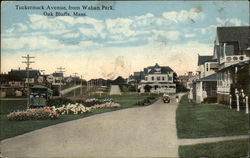 Tuckernuck Avenue, from Waban Park