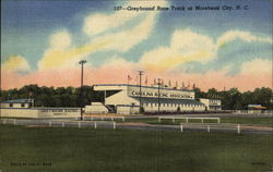 Greyhound Race Track