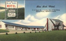 Blue Bird Motel