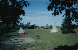 One of Detroit Area Scout Camps Postcard