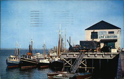 Fishing Boats at Provincetown Town Wharf