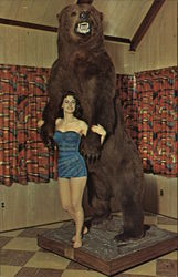 Giant Kodiak Bear - Blue Mountain Hotel