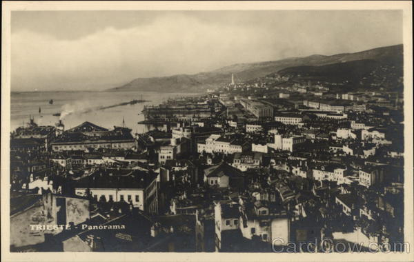 Panoramic View of Trieste Italy