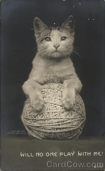 Cat and Ball of Yarn Cats