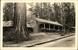 Mariposa Grove of Big Trees Lodge
