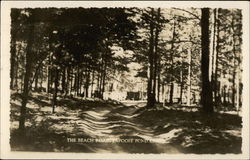 The Beach Road, Papoose Pond Camp
