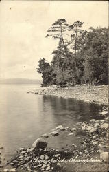 Shore of Lake Champlain