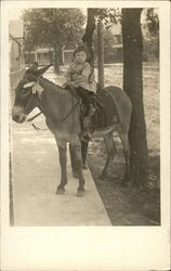 Child on Donkey