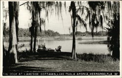 Teh Dock at Lakeside Cottages, lake Tsala Apopka