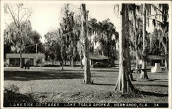 Lakeside Cottages, Lake Tsala Apopka