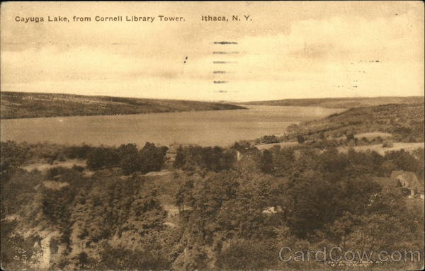 Cayuga Lake from Cornell Library Tower Ithaca New York