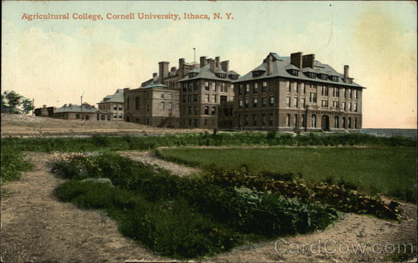 Agricultural College, Cornell Univerity Ithaca New York