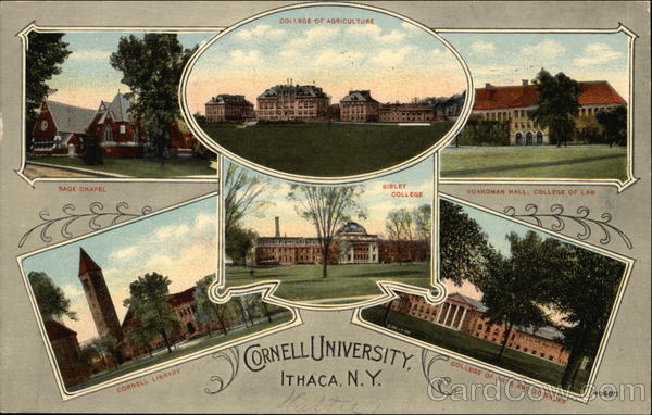 Cornell University Ithaca New York