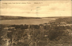Cayuga Lake from Cornell Library Tower