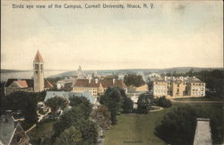 Bird's-Eye View of Campus, Cornell University