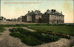 Agricultural College, Cornell Univerity